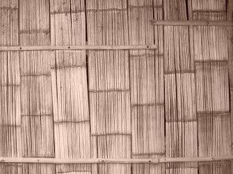 thai siding, katie kurtz designer